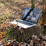 How to optimize remote working